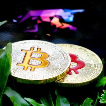 bitcoin-cbd